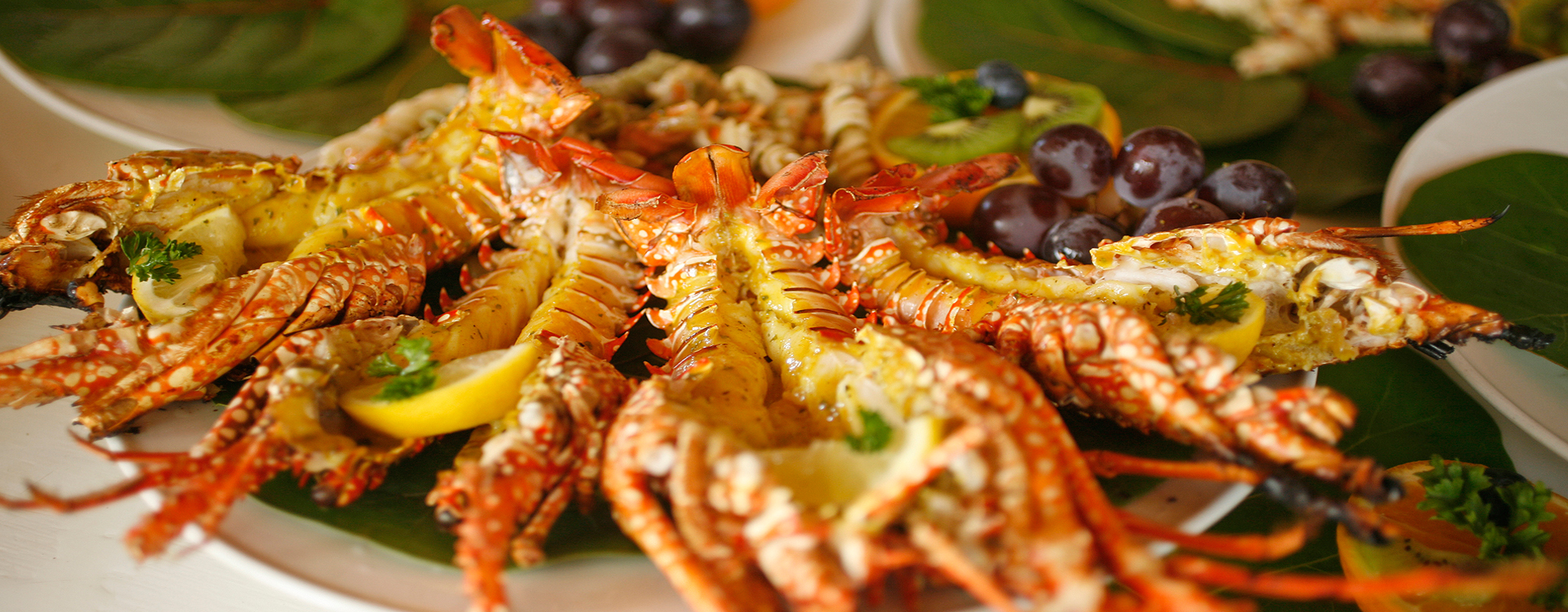 Cerulean serves fresh caught Anguilla seafood.